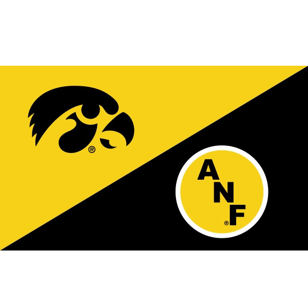Iowa Hawkeyes 3' x 5' Split Design Flag