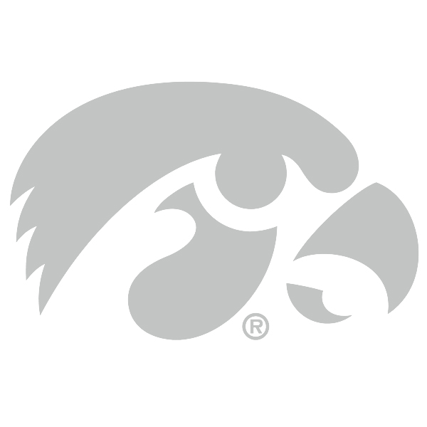 Iowa Hawkeyes Chrome Tiger Hawk Decal