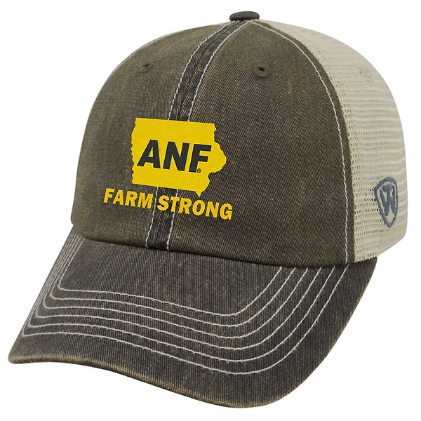 Iowa Hawkeyes ANF Dirty Mesh Cap