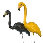 Iowa Hawkeyes Flamingo Fans