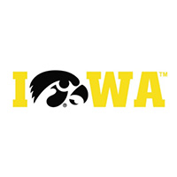 "Iowa Hawkeyes ""Hawkeye for O"" Decal-Gold"