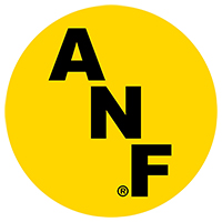 "Iowa Hawkeyes ANF 5"" Gold Decal"