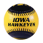 Iowa Hawkeyes Baseball