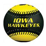 Iowa Hawkeyes Softball