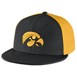 Iowa Hawkeye Players True Flex Cap