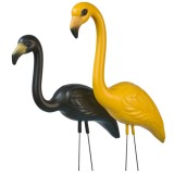 Iowa Hawkeyes Flamingo Fans