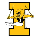 "Iowa Hawkeyes Gymnastics 3"" Decal"