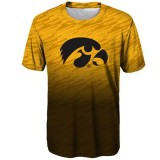 Iowa Hawkeyes Youth Stadium Performance Tee