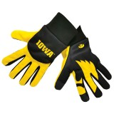 Iowa Hawkeyes Palm Logo Texting Glove