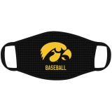 Iowa Hawkeyes Baseball Mask