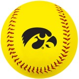 Iowa Hawkeyes Softball