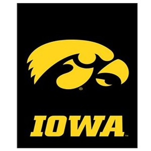 Iowa Hawkeyes Applique Garden Flag