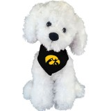 Iowa Hawkeyes Bichon Stuffed Animal