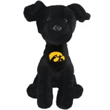 Iowa Hawkeyes Lab Stuffed Animal